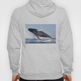 Humpback Whale Jumping High Hoody