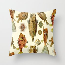 Ernst Haeckel - Ostraciontes Throw Pillow