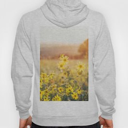 Yellow Flowers at Sunset Hoody