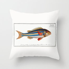 Marcus Elieser Bloch - Blue-striped Gilt-head Throw Pillow