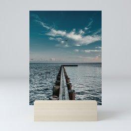 Fly 2 the Pier - LG Mini Art Print