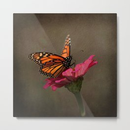 Prefect Landing - Monarch Butterfly Metal Print