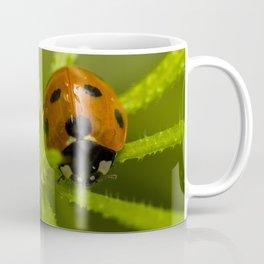 Ladybug in the center Coffee Mug