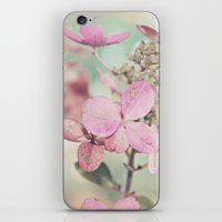 blush iPhone & iPod Skins featuring Blush  by Laura Ruth