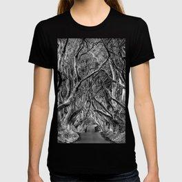 Avenue of trees T-shirt
