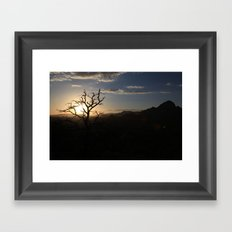 Skimpy Tree Glows Framed Art Print