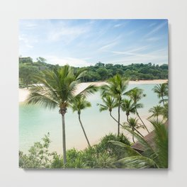 palm tree om a tropical beach Metal Print