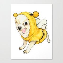 Chihuahua - YOGURT the pirate dog  Canvas Print