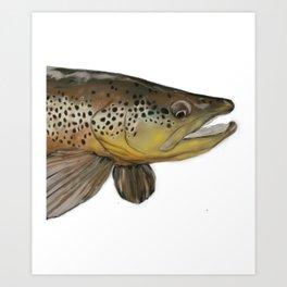 Colorado Brown Trout Art Print