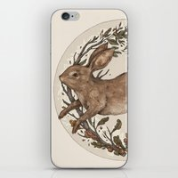 rabbit iPhone & iPod Skins featuring Rabbit by Jessica Roux