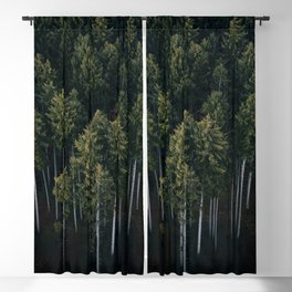 Aerial Photograph of a pine forest in Germany - Landscape Photography Blackout Curtain