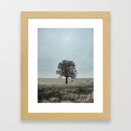 Still Alone Framed Art Print