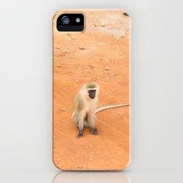 Kenyan monkey iPhone Case