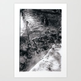 Shopping Carts of the Wild Art Print