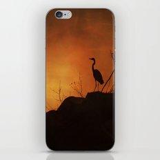 Night silhouette iPhone & iPod Skin