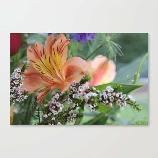 Freesia 2 Canvas Print