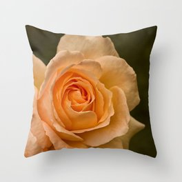 Dew Kissed Rose Floral Throw Pillow
