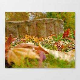 Autumn day 2016 Canvas Print