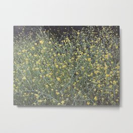 Yellow Flower Field Metal Print