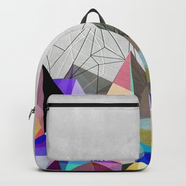 Colorflash 3 Backpack