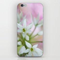 Wild Garlic iPhone & iPod Skin
