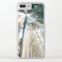 Forest Road Clear iPhone Case