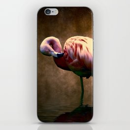 Flamingo Stance 2 iPhone Skin