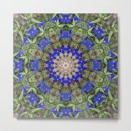 Peacock colors botanical kaleidoscope, mandala - Anagallis, Blue pimpernel flowers Metal Print