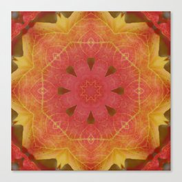 Sugar maple mandala 4 Canvas Print