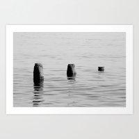 Three Stumps - Black and White Art Print