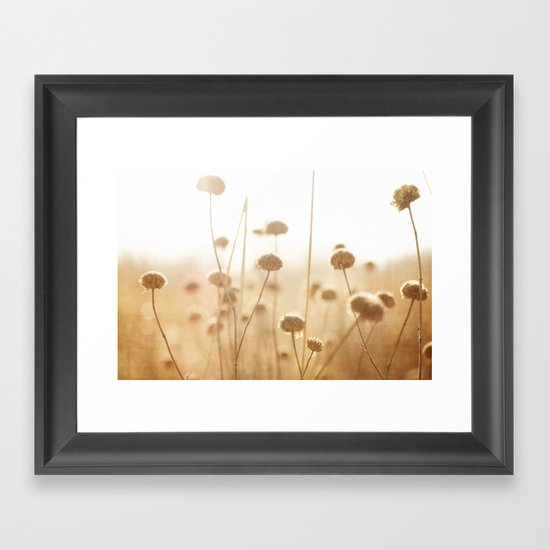 field of light Framed Art Print