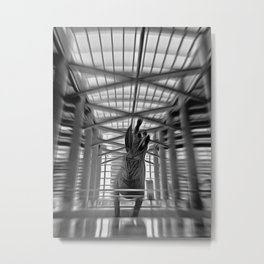 Jack Rabbit at Airport Metal Print