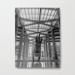 Jack Rabbit at Airport Metal Print
