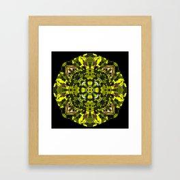 Sun Lit Leaves Framed Art Print