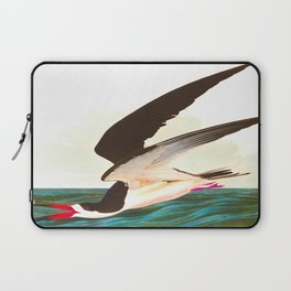 Black Skimmer or Shearwater Bird Laptop Sleeve