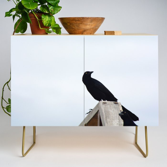 Bird collection _03 Credenza