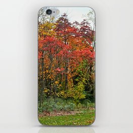 First Things First iPhone Skin