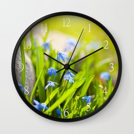 Scilla siberica flowerets named wood squill Wall Clock