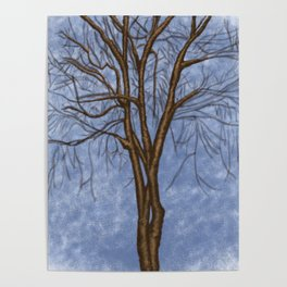 The Twisted Tree Poster