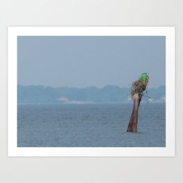 Chesapeake Bay Marker Art Print