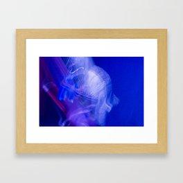 Brule Framed Art Print