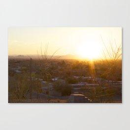 Suburban Desert Sunrise Canvas Print