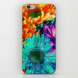 Colored Daisies iPhone Skin
