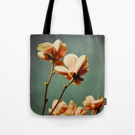 when there was spring Tote Bag