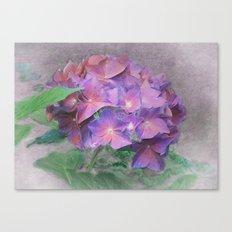 Blüten Traum Canvas Print