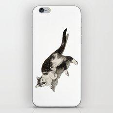 Francis iPhone & iPod Skin