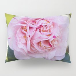 Strawberry Blonde Camellia Bloom Pillow Sham
