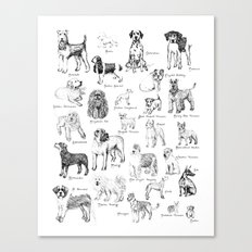Dog Alphabet Illustration Print Canvas Print