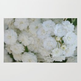 Deutzia Pure and Simple Rug