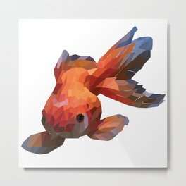 a three-tailed fish with attractive colors Metal Print